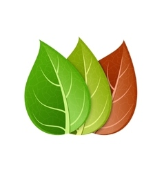 Modern colorful leaf set on white vector