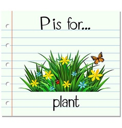 Flashcard letter p is for plant vector