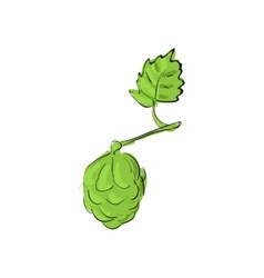 Hops icon cartoon style vector