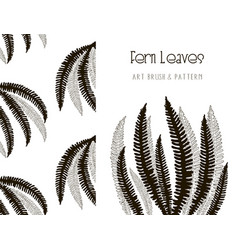 fern leaves design art brush and pattern vector image