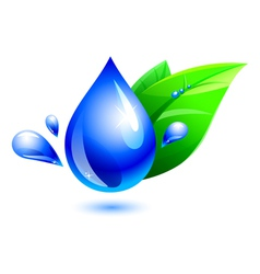 water drop and leaf vector image