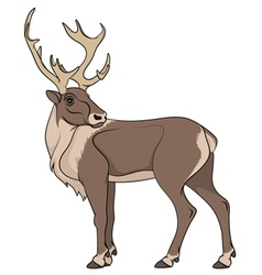 Deer isolated object vector