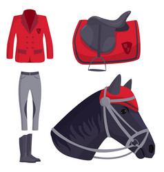 jockey horse hippodrome champion animal vector image