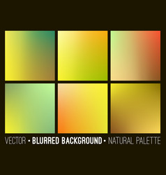blurred abstract backgrounds set vector image