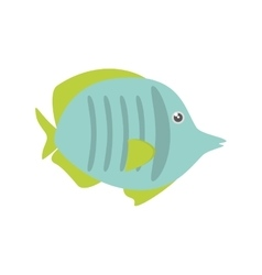 Exotic fish sealife freshwater vector