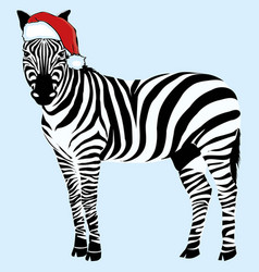 zebra hat - christmas design zoo vector image vector image