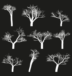 set of white outlines trees black background vector image vector image