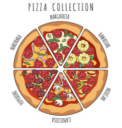 pizza slice collection vector image vector image