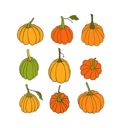 pumpkins vector image vector image