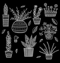 House plants set vector