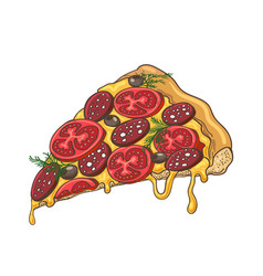Pizza slice icon on white vector