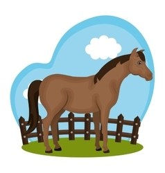 Horse animal farm in the field vector
