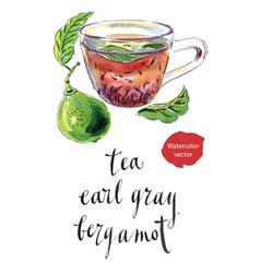 cup of earl grey tea with bergamot kaffir lime vector image