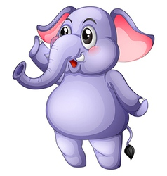 A young gray elephant vector image