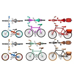 Different kind of bicycles vector image vector image