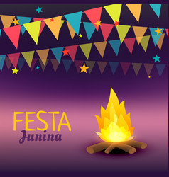 Festa junina celebration vector