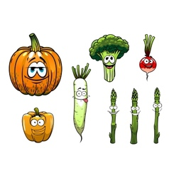 Broccoli asparagus radishpumpkin and pepper vector