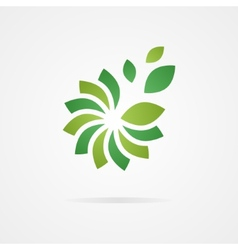 Logo combination of a flower and leaf vector