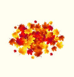 autumn circle round vector image vector image