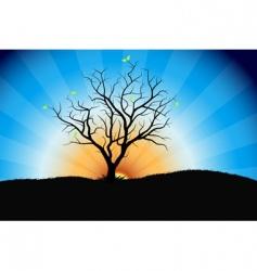 tree sunrise vector image