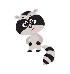 sick baby raccoon having stomach ache abdominal vector image