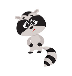 sick baby raccoon having stomach ache abdominal vector image vector image