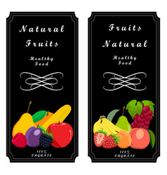 the set fruit vector image