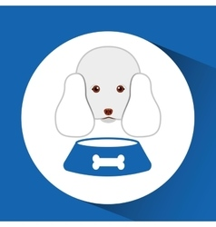 Digital pet shop with poodle and food bowl vector
