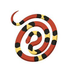 Rolled in spiral circle coral snake icon vector