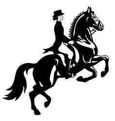 Dressage rider black white vector