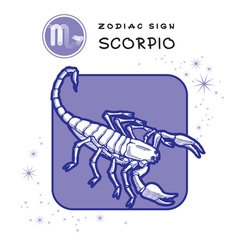 Scorpio astrology sign vector