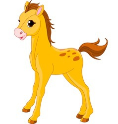 cute horse foal vector image vector image
