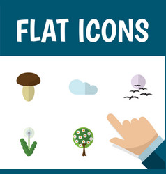 Flat icon bio set of overcast tree floral and vector
