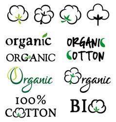 Organic cotton design elements vector