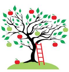 apple tree ladder vector image vector image