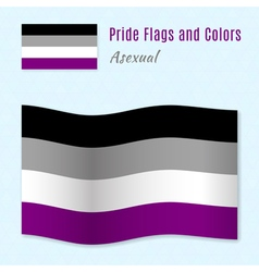 Asexual pride flag with correct color scheme vector