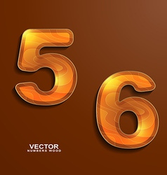 icons wood texture numbers 5 6 vector image vector image