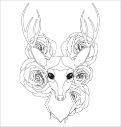 Graceful deer coloring page for adult vector