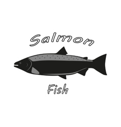 A salmon fish vector