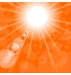 Abstract sun background orange summer pattern vector