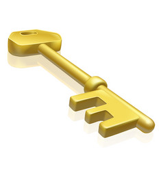 brass or gold key vector image vector image