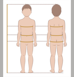 childs body measurements vector image vector image