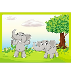 Two gray elephants vector image