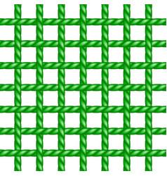 Net of rope in green design vector