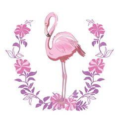 pink flamingo isolated on the white background vector image