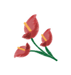 Drawing anthurium flower ornament image vector