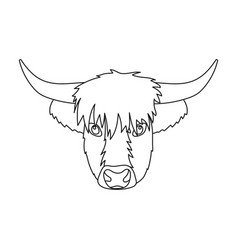 Highland cattle head icon in outline style vector