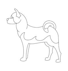 Akita dog line vector