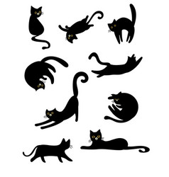 black lovely cats vector image