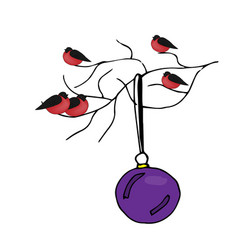 bullfinches sitting on a branch christmas ball vector image vector image